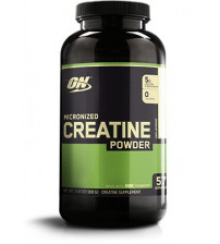 ON Creatine Powder (300g)