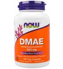 DMAE 250 mg (100 Veggie Caps)