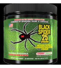 BLACK SPIDER Powder (210g)