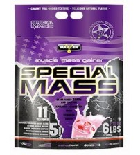 Special Mass Gainer (2700g)